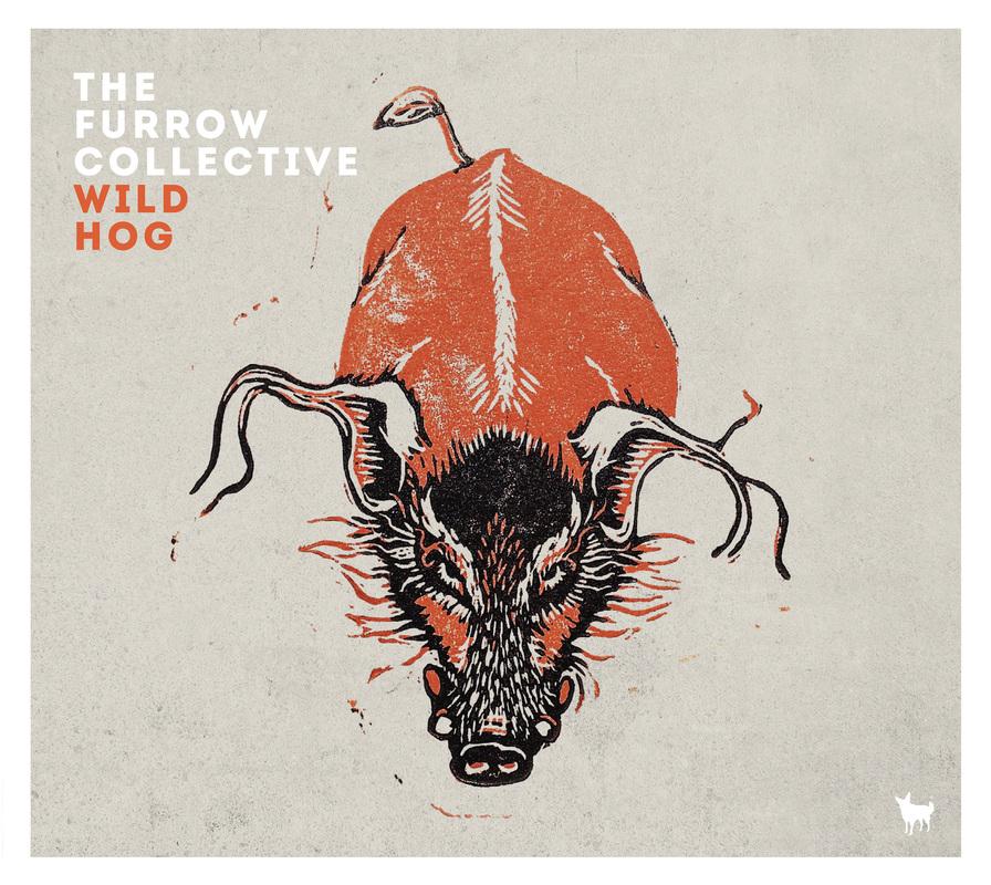 wild-hog-packshot_3_orig