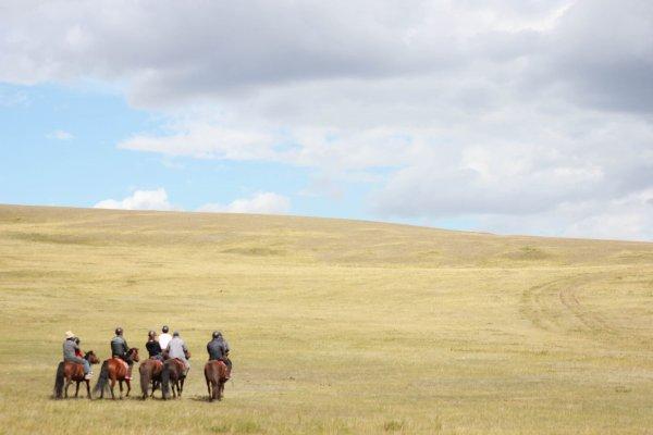 モンゴル 旅