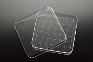 Simport D210-16 Polystyrene Square Petri Dish with Grid, Sterile, 110ml Volume, 90mm Diameter x 15mm Height (Case of 500)
