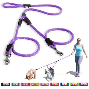 PawtitasTM 2 Dog Leash