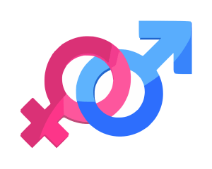 male and female gender signs connecting at the circles