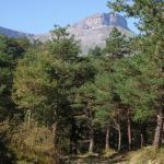 Sierra Salvada: conflictos entre alaveses, burgaleses y vizcaínos (III)