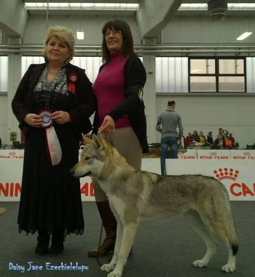 Daisy Jane al raduno di Reggio Emilia