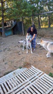 Apache Claudia e Jungle Julia