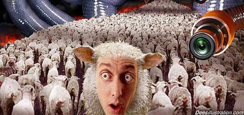 「Sheeple」の画像検索結果