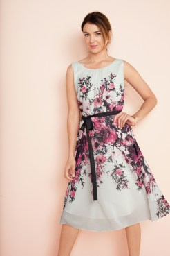 Chiffon Tea Dress