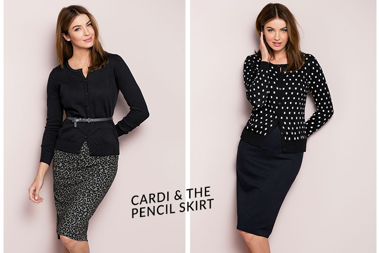 The Cardigan and The Pencil Skirt