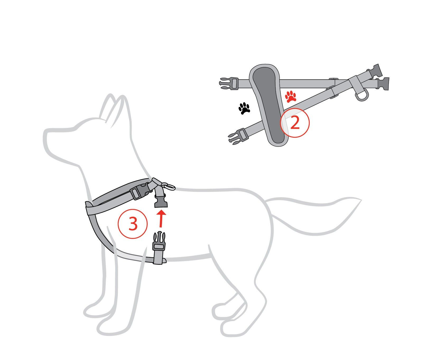 No Pull Dog Harness Chest Harnesses For Dogs