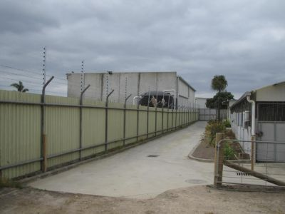 Commercial - Electric Fencing - 3