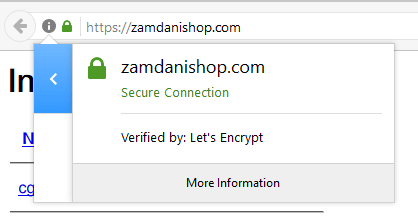 Check SSL on Browser