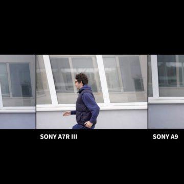 Sony A7 III, A7R III nebo A9? Kterou byste brali vy?