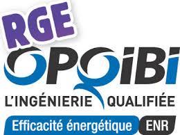 OPQIBI-RGE