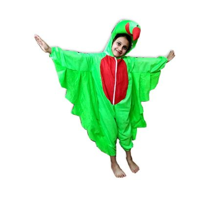 Kids Parrot Fancy Dress Costume on Rent.