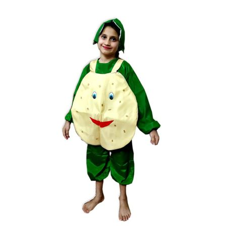 Kids Potato Costume Fancy Dress on Rent