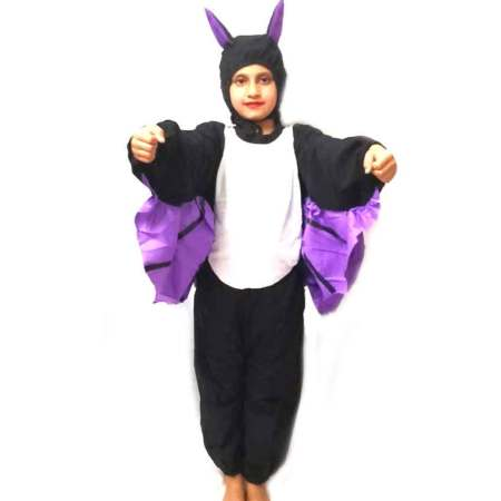 Bat Costume on Rent