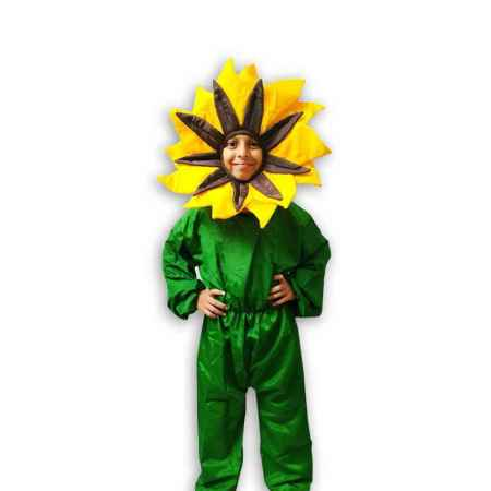 Hire Sunflower Costume