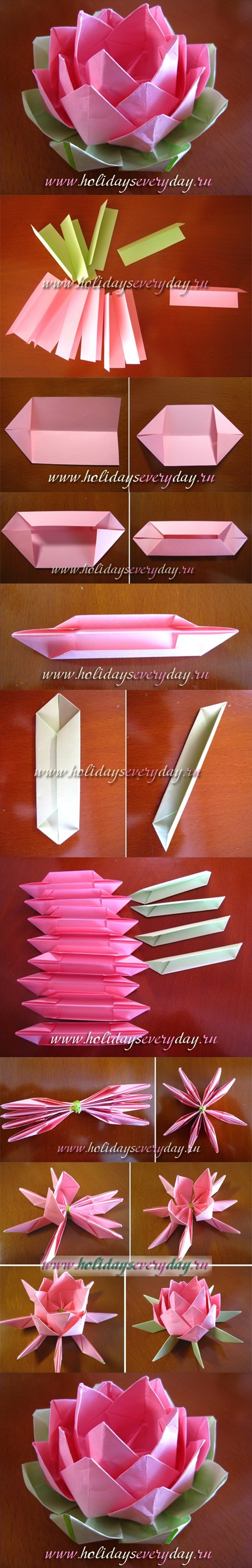 Origami Lotus Flower Easy Step By Kayaflowerco