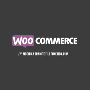 Modifiche al plugin WooCommerce