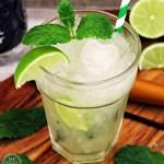 Non Alcoholic Mojito - Fab Fod 4 All