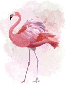Fluffy Flamingo 1