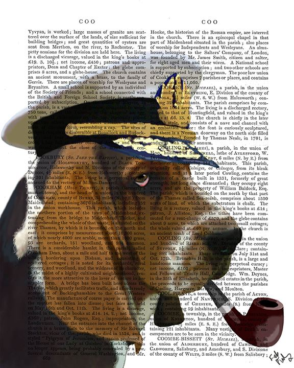 Basset Hound Sea Dog