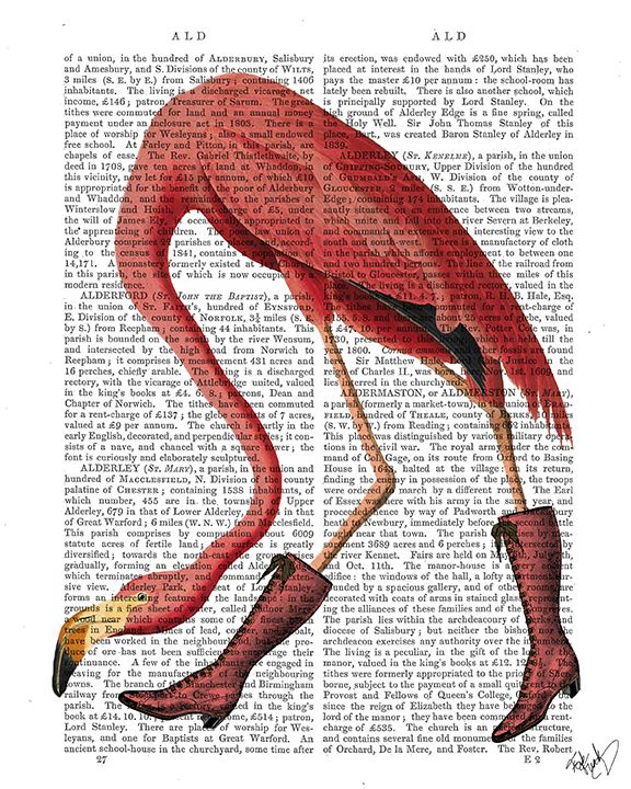 Flamingo in Pink Boots