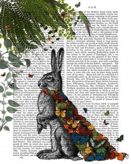 Hare with Butterfly Cloak