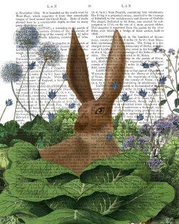 Cabbage Patch Rabbit 5