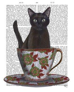 Black Cat in Teacup