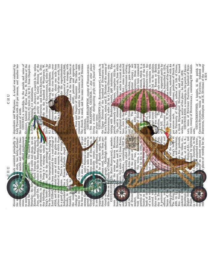 Boxer Scooter