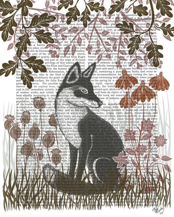 Country Lane Fox 3