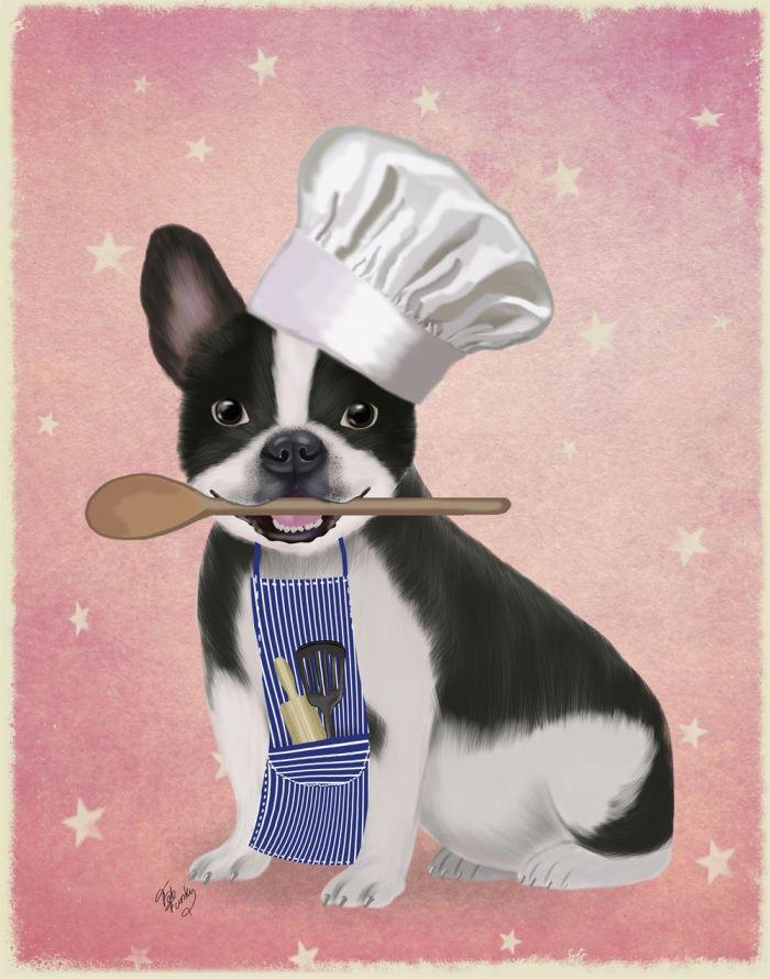French Bulldog Chef