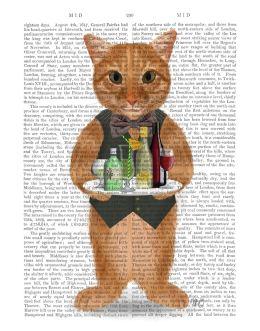Ginger Cat Cocktails