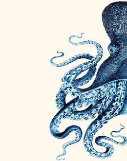 Octopus Blue Half