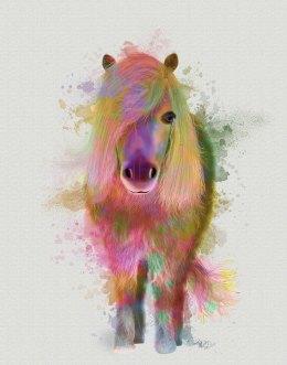 Pony 1 Full Rainbow Splash