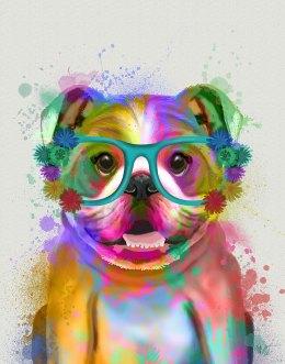 English Bulldog Rainbow Splash
