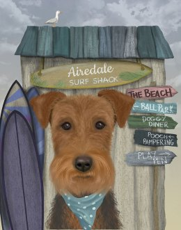 Airedale Surf Shack
