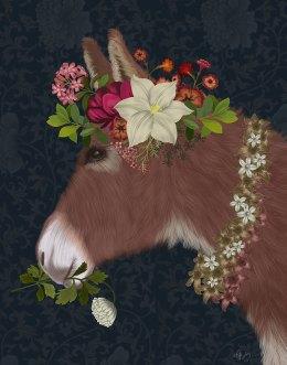 Donkey Bohemian 5