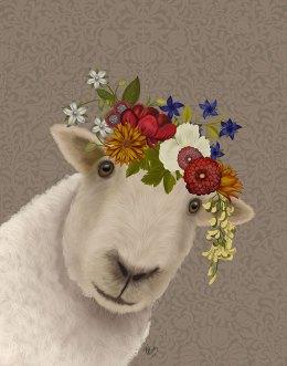 Sheep Bohemian 2