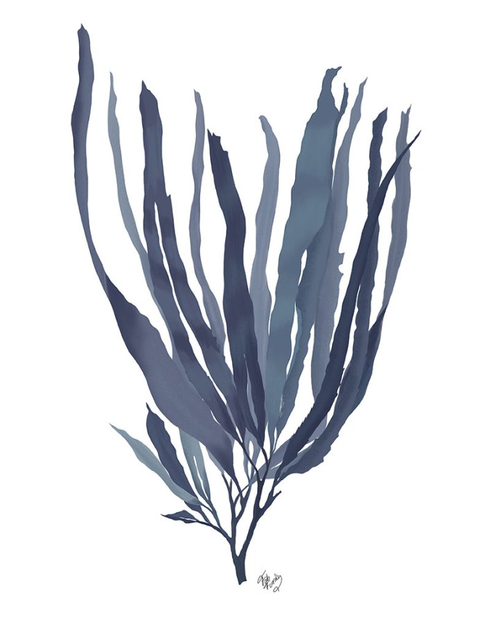 Seaweed 1 Blue