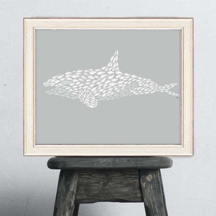 Orca Whale Estuary Vibe Grey