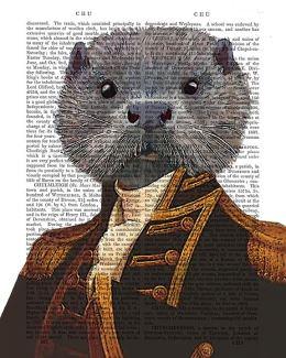 Captain Otter