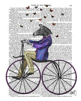 Zebra On Bicycle