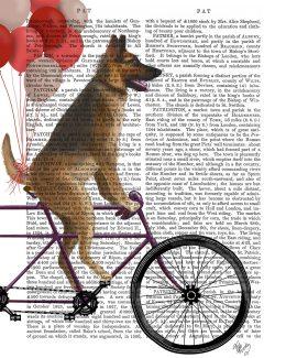 German Shepherd on Bicycle