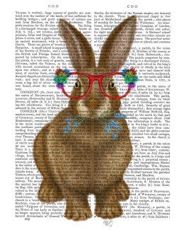 Rabbit and Flower Glasses