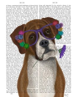 Boxer and Flower Glasses