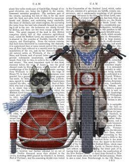 Husky Chopper and Sidecar