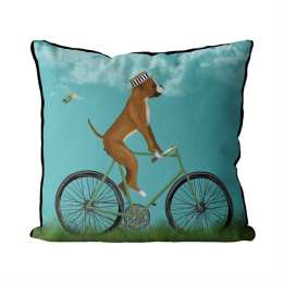 Boxer on Bicycle - Sky