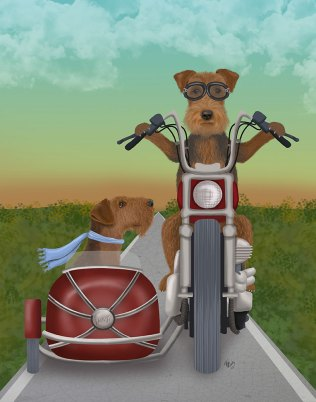 Airedale Chopper and Sidecar