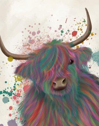 Highland Cow 1